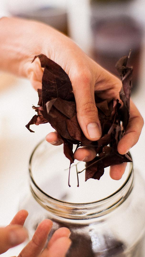 O processo de tingimento natural de tecidos da estilista Flavia Aranha usa, entre outros componentes, folhas