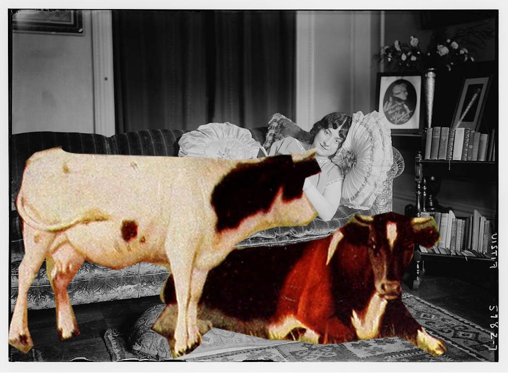 história pra boi dormir